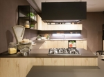 Contemporary Kitchen in Light Wood